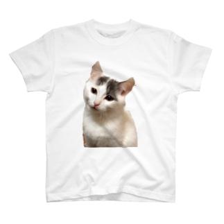 こどもふうくん T-shirts
