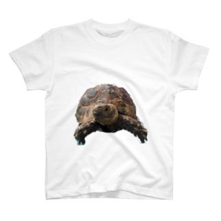 モーラ2 T-shirts