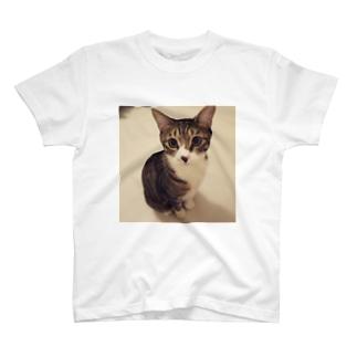 らいちさんのおすまし☻ T-shirts