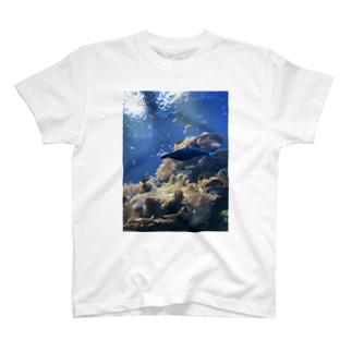 水族館 T-shirts