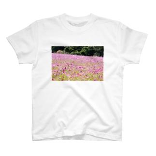 秋桜と空 T-shirts