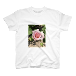 ピンクの薔薇ちゃん T-shirts