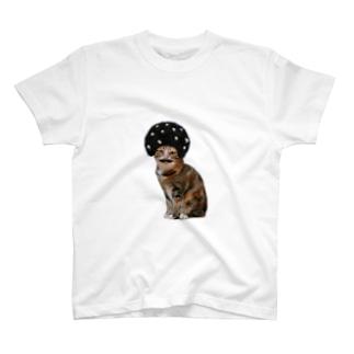 あふろにゃんこ T-shirts