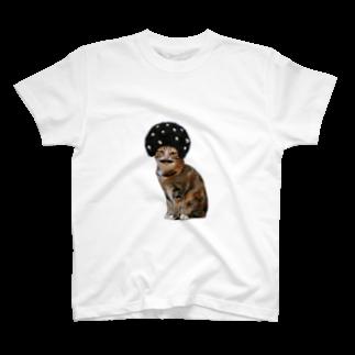ちあきᔦꙬᔨ登販研修中のあふろにゃんこ T-shirts