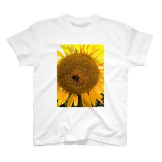 ハナとハチ T-shirts