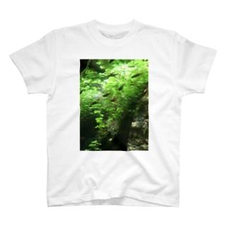 熱帯魚 T-shirts