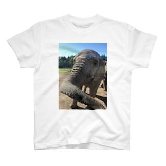 ゾウさんこんにちは T-shirts