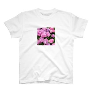 アジサイくん T-shirts