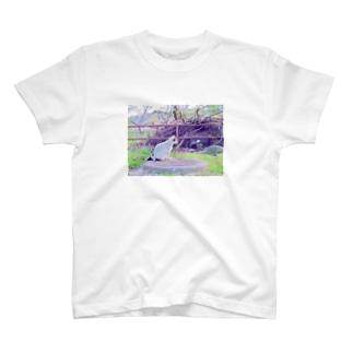 にゃんころ T-shirts