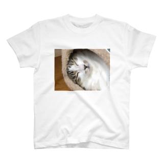耳なし猫 T-shirts