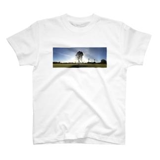 公園の一本木 T-shirts