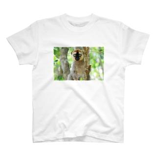 lemurちゃん。 T-shirts