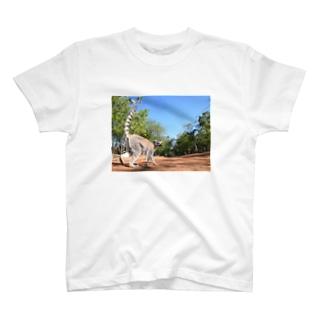 lemurくんのおさんぽ。 T-shirts