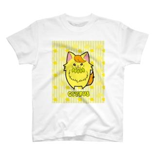 [フルーツ猫シリーズ]キトリス T-shirts