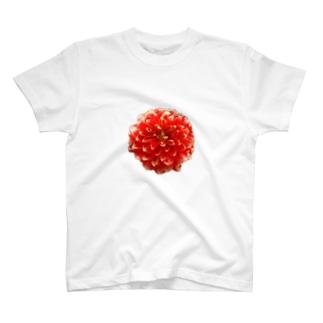 赤いお花 T-shirts