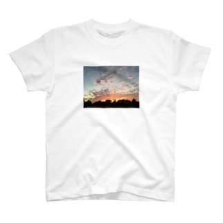Canolaの夕焼けフォトTシャツ T-shirts