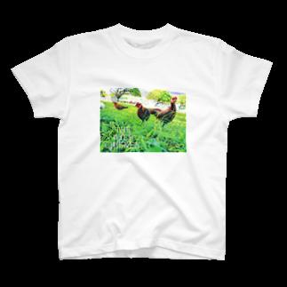 BRAVE MANTISのワイルド チキン T-shirts