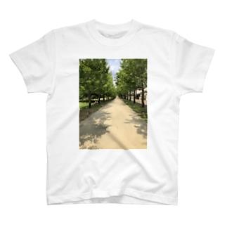 並木 T-shirts