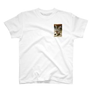 子猫シグレ T-shirts