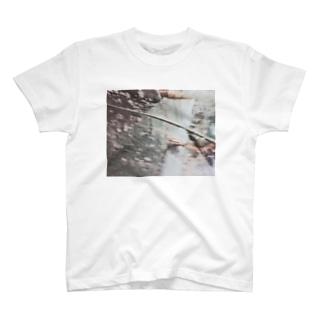 ❄︎ T-shirts