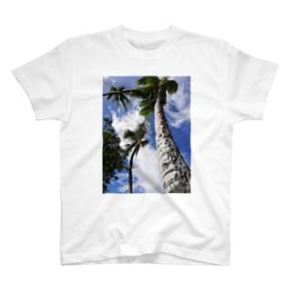 ハワイの木 T-shirts