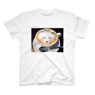 くまちーの T-shirts