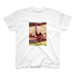 ワイルド チキン 2 T-shirts