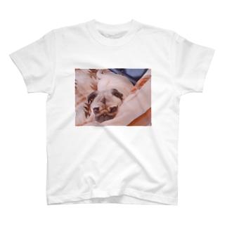 みつめるパグ T-shirts