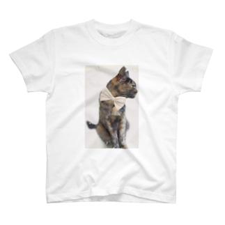 クロコのおめかしくまにゃん T-shirts