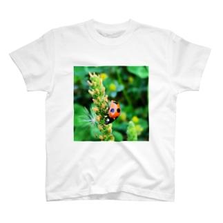 てんと虫君 T-shirts