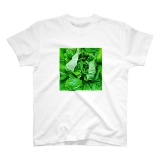 白菜 T-shirts
