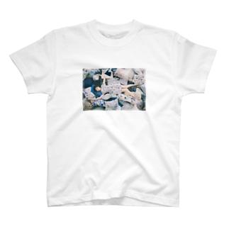 清田大介 T-shirts