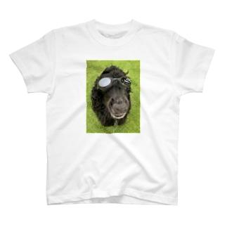 キメタ・・つもり T-shirts