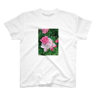 美しい五月(pinkpink) T-shirts