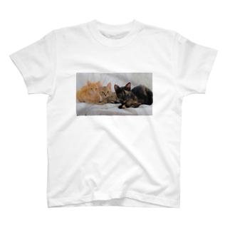 ちびニャンズ T-shirts