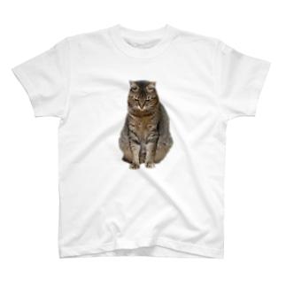 反省きなこ T-shirts