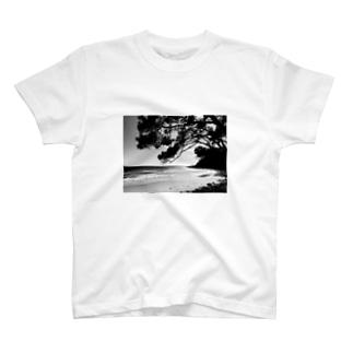 Beach and Tree T-shirts