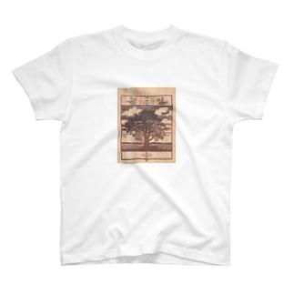 孤高の大木 T-shirts