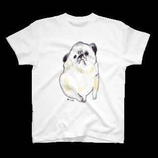 アコルのパグ Tシャツ