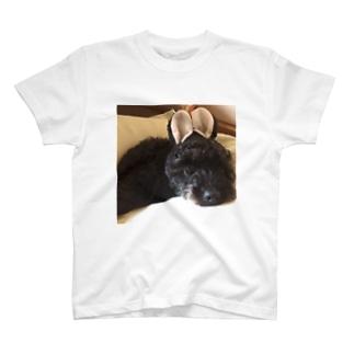 ウサ耳黒ワンコ T-shirts