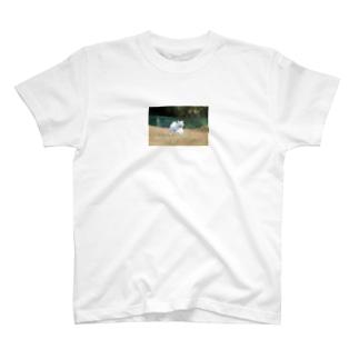 みるくさん。 T-shirts