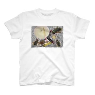 まじ洗い物しないとなァ、、、 T-shirts