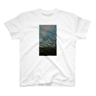 ススキ夕闇 T-shirts