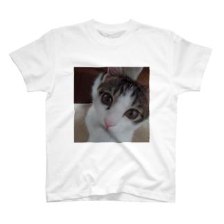 ぺろ T-shirts