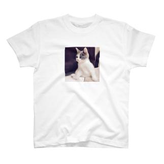 貫禄あり T-shirts