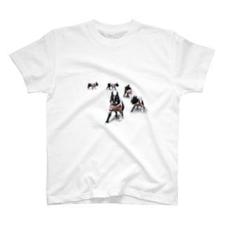 park a holic bostonterrier T-shirts