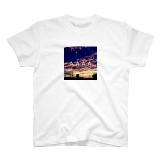SUNSET BOX LOGO T-shirts