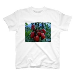 イタリアントマト T-shirts