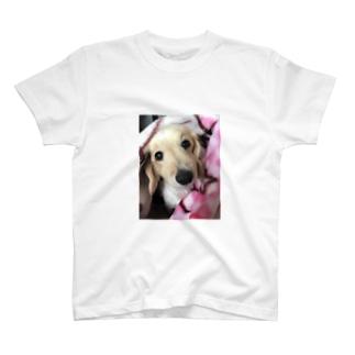 愛犬と一緒 T-shirts