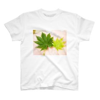 有明もみじTシャツ T-shirts